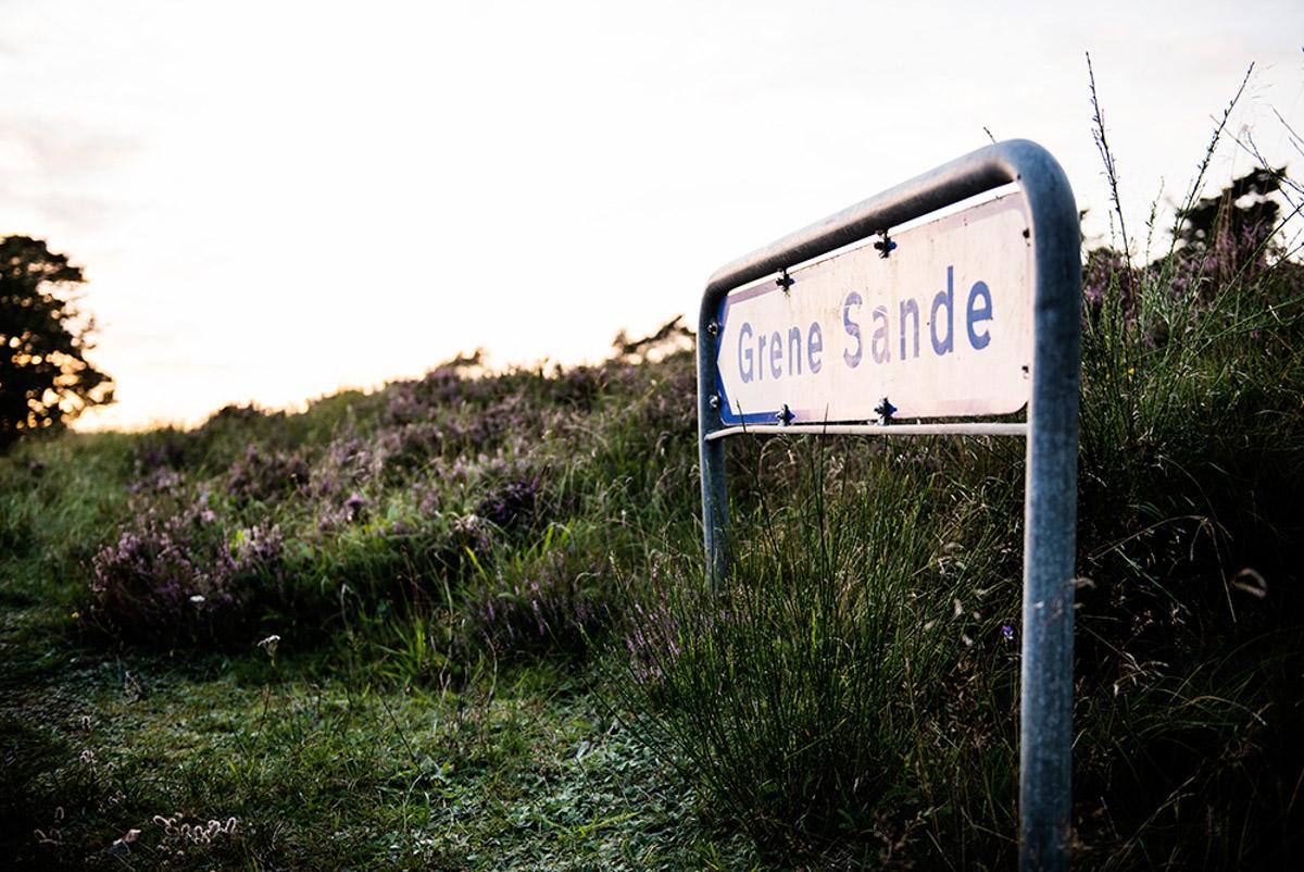 Grene Sande, skilt_p1_i2